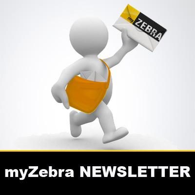 myzebra.fr et sa newsletter